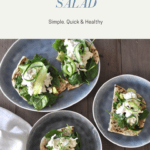 blue plates with naan topped with spinach, chicken salad and cucumber ribbons