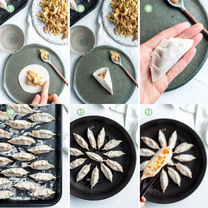 mushroom gyoza process steps 7 to 12
